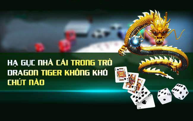 Rồng hổ là gì? Cách chơi Rồng Hổ online hiệu quả